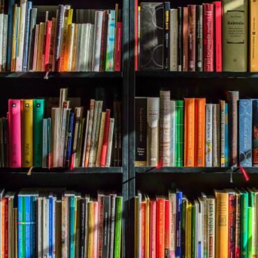 ¿Dónde estará ese libro?  (Diego Santos Márquez)